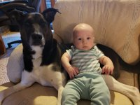 Dog and Son